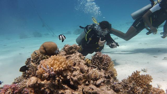 Подводный отдых в Доминикане