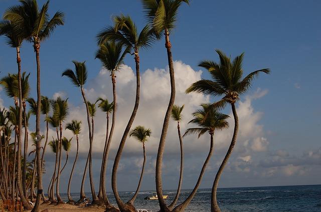 Доминиканский курорт Playa Dorada