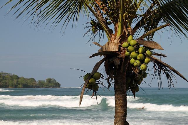 Курортный остров Taboga