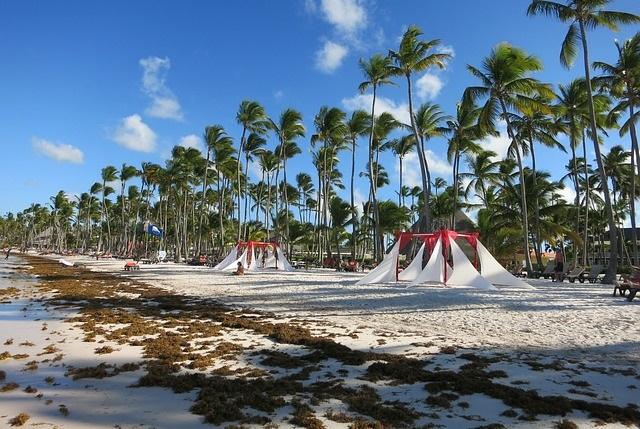 Пляжи Доминиканы без водорослей