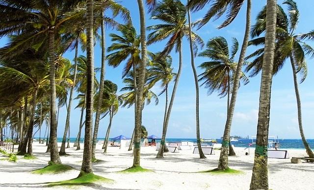 Лучшее время для пляжного отдыха в Доминикане