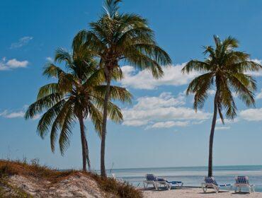 Отдых в Доминикане в мае: погода, температура воздуха и воды, развлечения, стоит ли ехать?