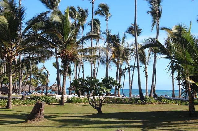 Температура воздуха и воды в Доминикане в январе