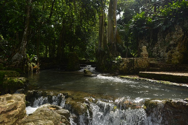 Заповедный парк в Доминикане
