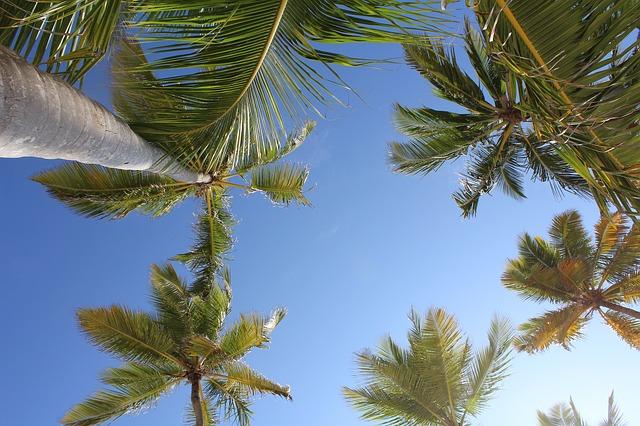 Температура в апреле в Доминикане