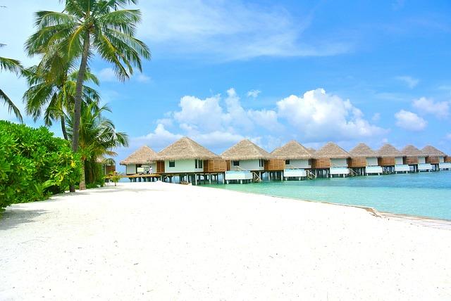 Доминикана или Мальдивы